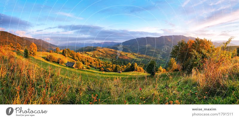 September rural scene in mountains Sky Nature Vacation & Travel Summer Green Beautiful Tree Landscape Red Clouds Forest Mountain Environment Yellow Meadow