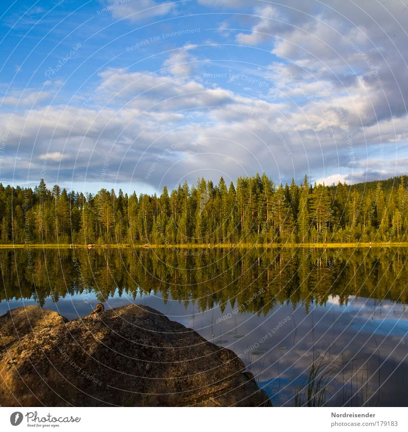 Sky Nature Beautiful Summer Vacation & Travel Calm Forest Freedom Dream Moody Lake Island Fresh Natural Romance Longing