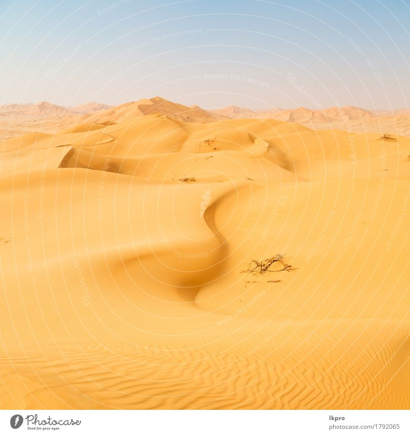 the empty quarter and outdoor Sky Nature Vacation & Travel Summer Beautiful White Sun Landscape Loneliness Black Yellow Gray Sand Tourism Wild Horizon