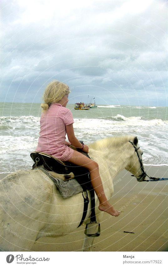 Trancoso Girl Child Horse Beach Watercraft Brazil South America Equestrian sports Sky