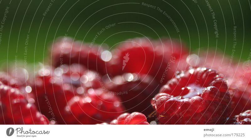 Green Red Nutrition Healthy Fruit Fresh Natural Berries Harvest Organic produce Food Raspberry Fruity Vegetarian diet