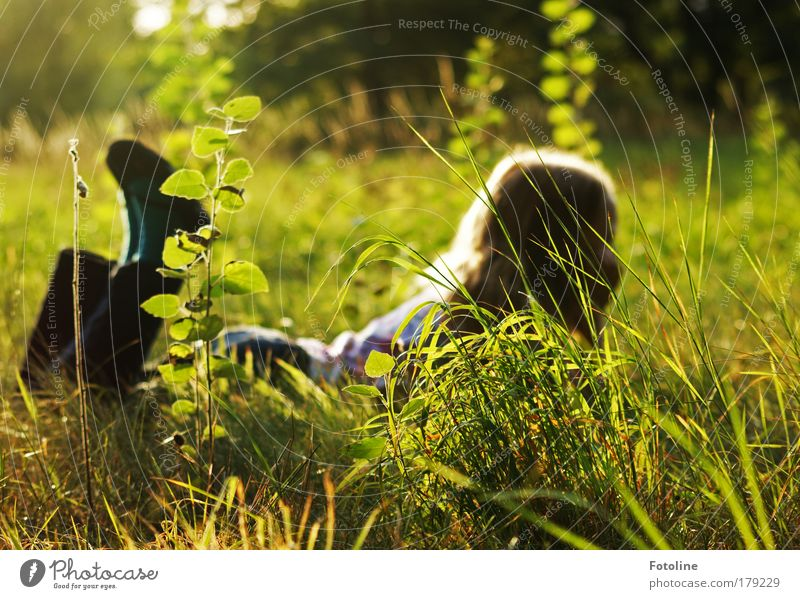 Nature Plant Sun Girl Summer Leaf Relaxation Environment Meadow Landscape Child Grass Warmth Hair and hairstyles Garden Legs
