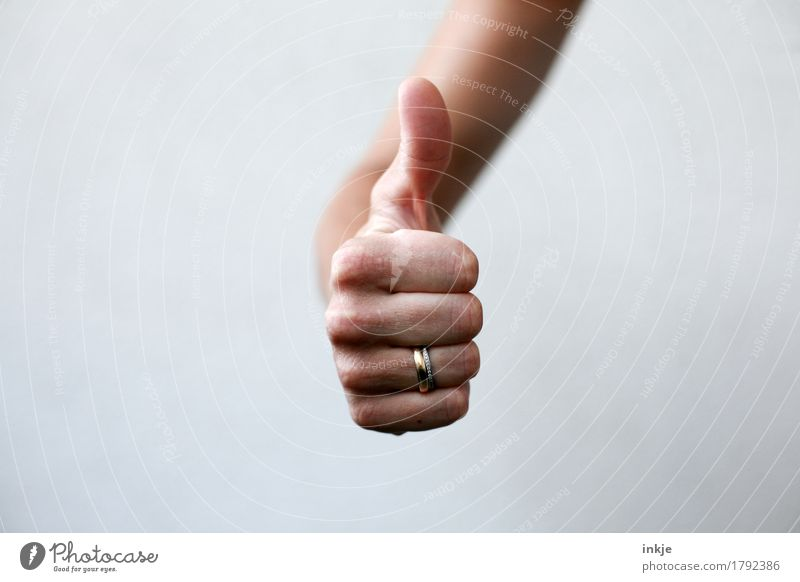 Thumbs up! Lifestyle Leisure and hobbies Hand 1 Human being Communicate Success Positive Emotions Moody Contentment Enthusiasm Optimism Determination Loyal