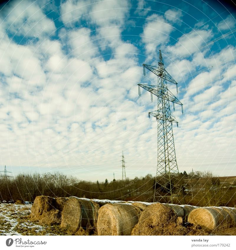 Nature Sky Clouds Cold Snow Landscape Field Environment Energy Energy industry Electricity Agriculture Elements Beautiful weather Electricity pylon Straw