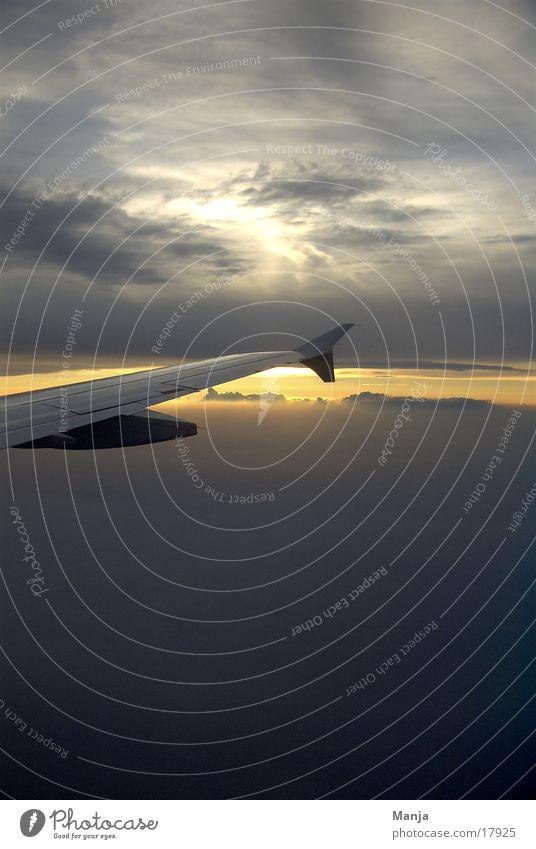 Sky Sun Clouds Airplane Aviation