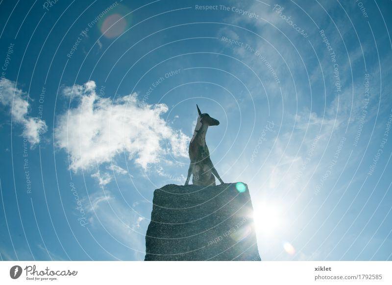 Stone gazelle Gazelle Stone statue Blue sky Memory Animal Forest Village Clouds Summer heat Sun Back-light Reflection Feet Tall Strong Speed Jump Eternity