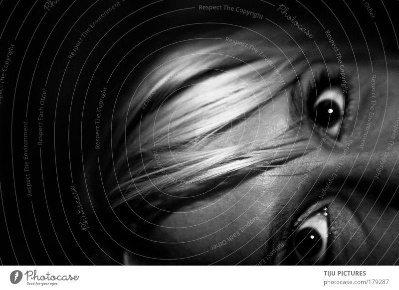 Joy Eyes Feminine Emotions Head Hair and hairstyles Happy Moody Blonde Fear Dangerous Cool (slang) Threat Simple Thin Fear of death