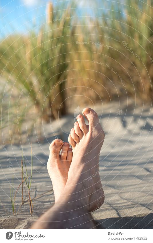 Feet high Healthy Fitness Wellness Life Harmonious Well-being Contentment Senses Relaxation Calm Cure Vacation & Travel Trip Summer Summer vacation Sun