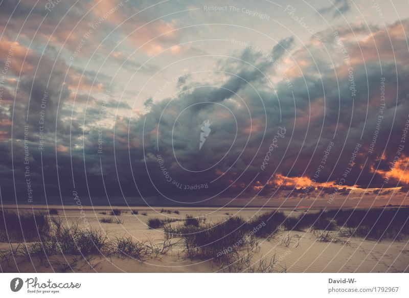 Weather phenomenon on the beach Art Work of art Painting and drawing (object) Environment Nature Water Clouds Storm clouds Sun Sunrise Sunset Sunlight Summer