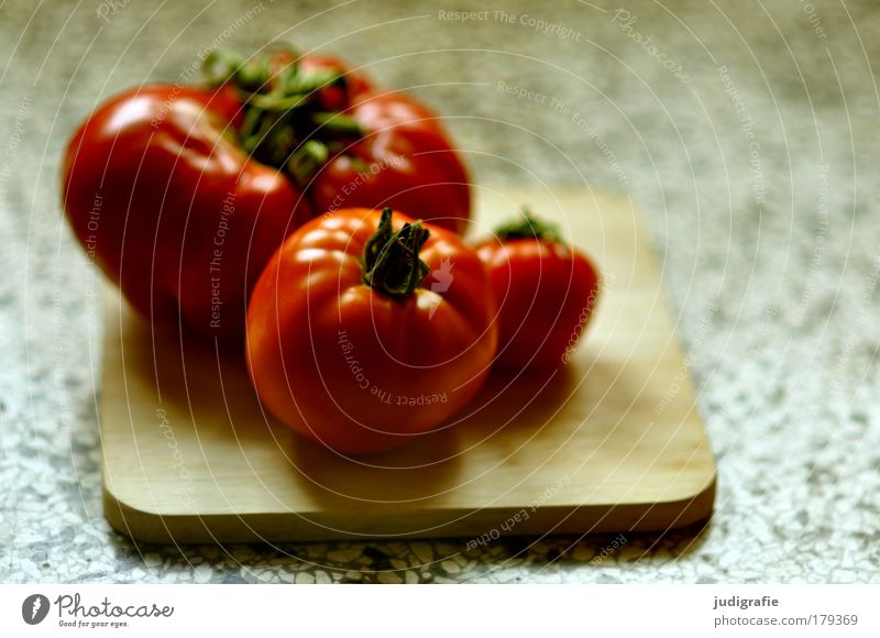 tomatoes Colour photo Interior shot Day Light Shadow Blur Food Vegetable Tomato Nutrition Vegetarian diet Diet Fat Fresh Delicious Natural Red Healthy