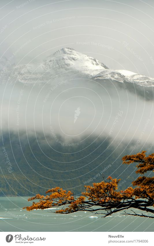 On the road in Patagonia Perito Moreno Glacier Argentina travel Mountain Autumn Fog