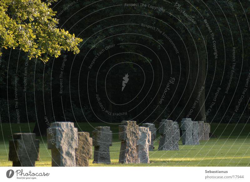 German war gravesite Cemetery Tombstone Shadow Historic Death Branch