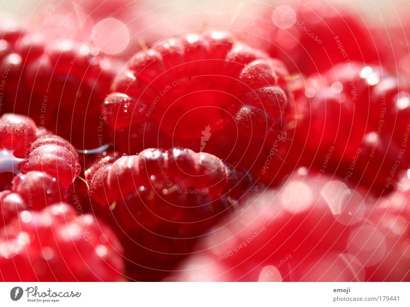 400 BEEREN / red red red Colour photo Exterior shot Close-up Detail Macro (Extreme close-up) Shallow depth of field Fruit Nutrition Organic produce