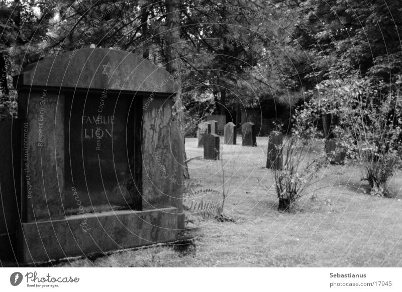Family Lion Cemetery Tombstone Grave Historic Black & white photo Death