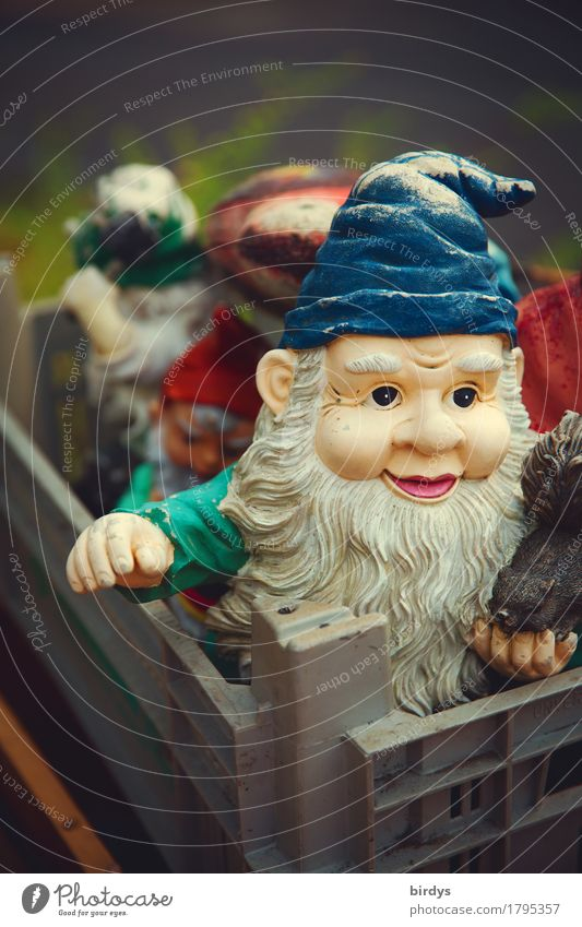 dwarf power Leisure and hobbies Decoration Kitsch Odds and ends Garden gnome Smiling Looking Authentic Exceptional Friendliness Together Funny Positive