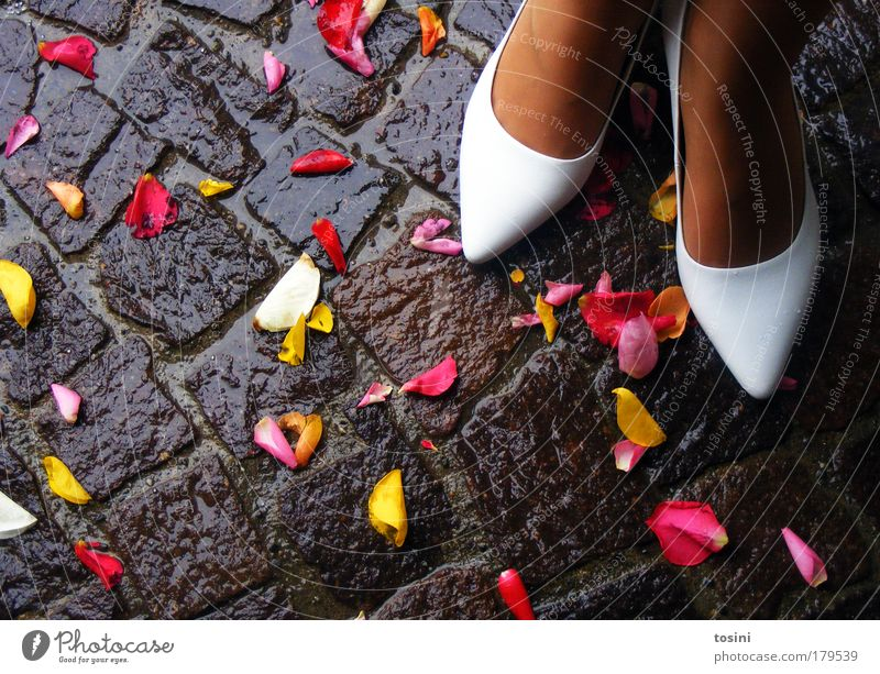 Human being Youth (Young adults) White Beautiful Red Joy Yellow Feminine Happy Blossom Couple Feet Contentment Footwear Wet Wedding