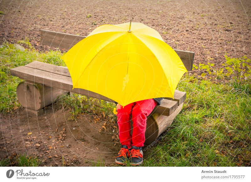 rain or sun Lifestyle Human being Masculine Youth (Young adults) 1 13 - 18 years Nature Climate Bad weather Field Sit Wet Yellow Moody Safety (feeling of)