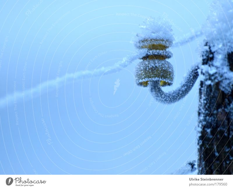 Ice crystals on the insulator of a pasture fence Colour photo Exterior shot Deserted Copy Space bottom Day Cable Energy industry Winter Frost Field Farm animal