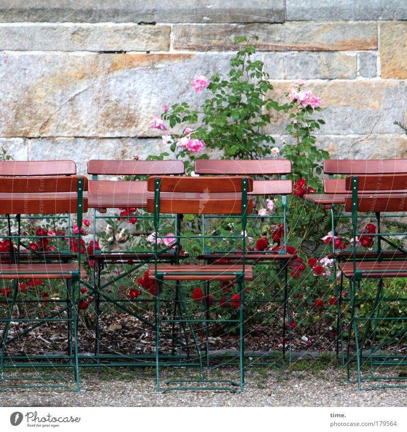 In a small group Chair Table Rose Wall (barrier) Sandstone Gravel Relaxation Break Café Side by side Accessible Deserted Encounter Day