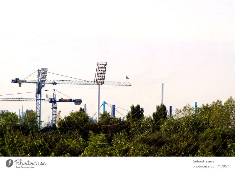 MSV Arena (construction phase) Stadium Crane Floodlight Football stadium Tree Duisburg