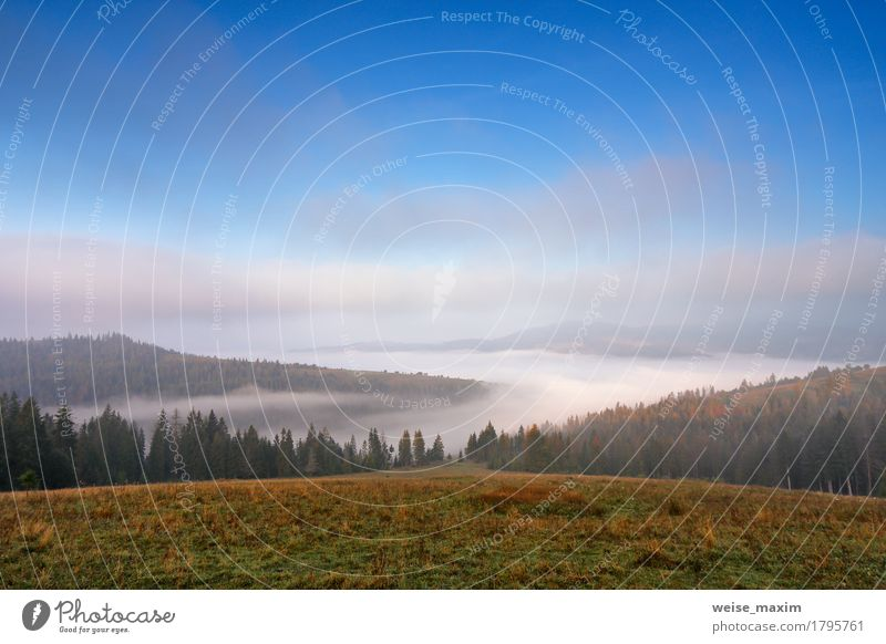 Autumn September foggy morning in mountains Beautiful Vacation & Travel Tourism Trip Far-off places Freedom Snow Mountain Environment Nature Landscape Sky