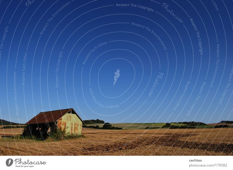 Old Sky Blue Calm Loneliness Autumn Freedom Landscape Contentment Brown Field Horizon Earth Bushes Hill Agriculture