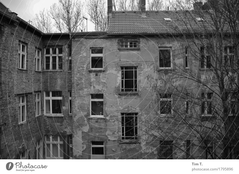 Backyard Berlin Prenzlauer Berg Senior citizen Courtyard Black & white photo Exterior shot Deserted Day