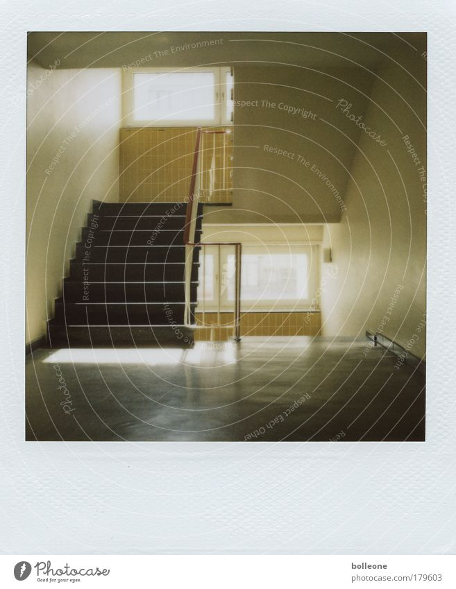 stairlights Subdued colour Interior shot Polaroid Deserted Light Shadow Contrast Central perspective House (Residential Structure) Interior design High-rise