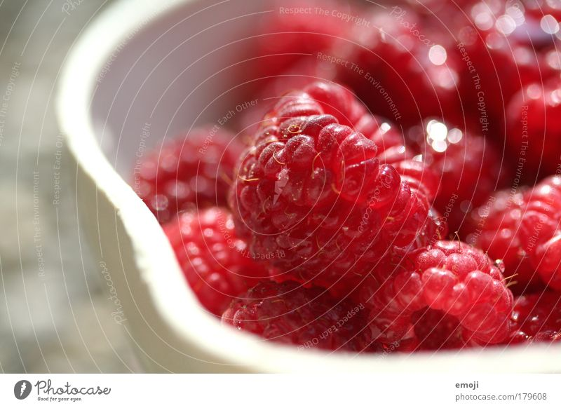 Nature White Red Nutrition Healthy Fruit Fresh Natural Division Harvest Bowl Organic produce Raspberry Fruity Agriculture Pick