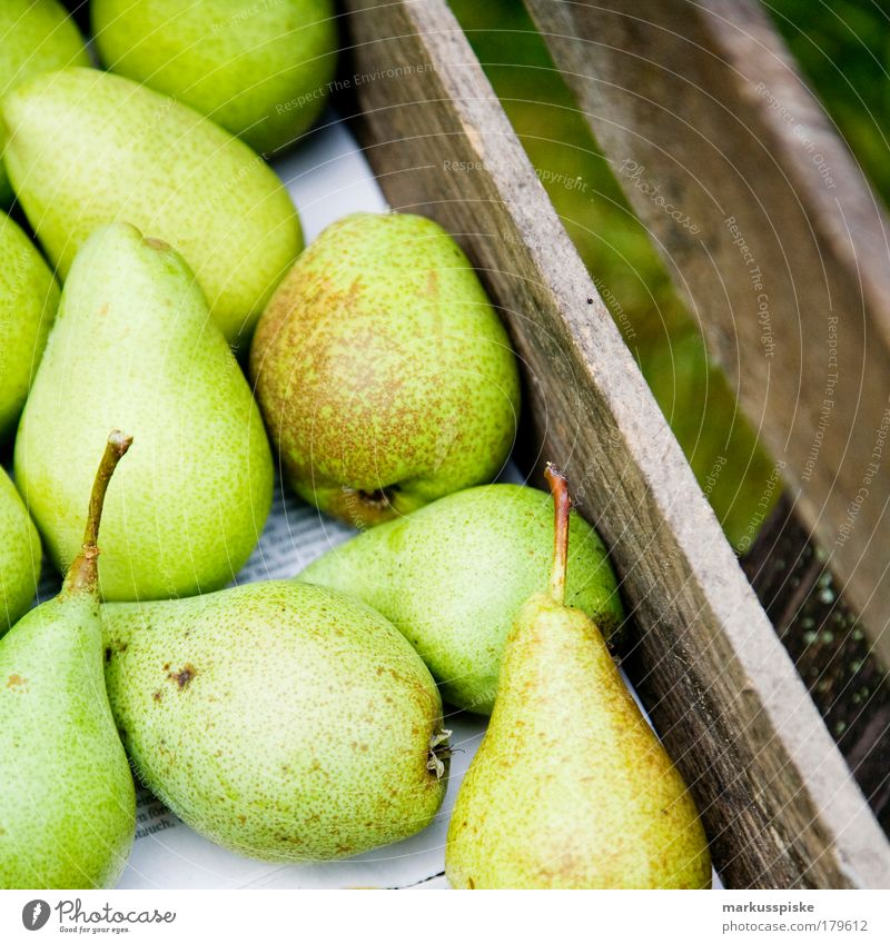 Summer Life Garden Healthy Fruit Food Nutrition Healthy Eating Well-being Organic produce Fruit trees Harmonious Fasting Vegetarian diet Pear Pear tree