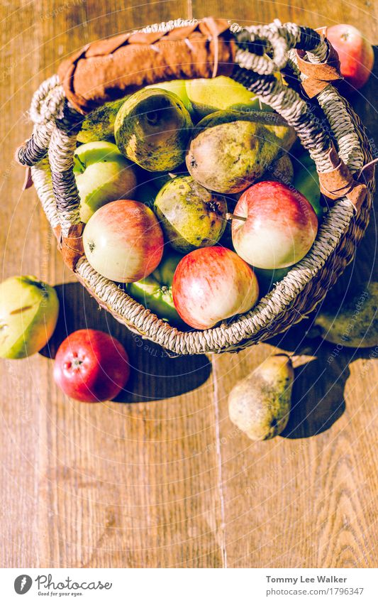 Handpicked fruits Fruit Apple Garden Nature Autumn Village Stone Dirty Fresh Delicious eco Organic Pear Uneven ugly Shabby Harvest eat agriculture Farm radicle