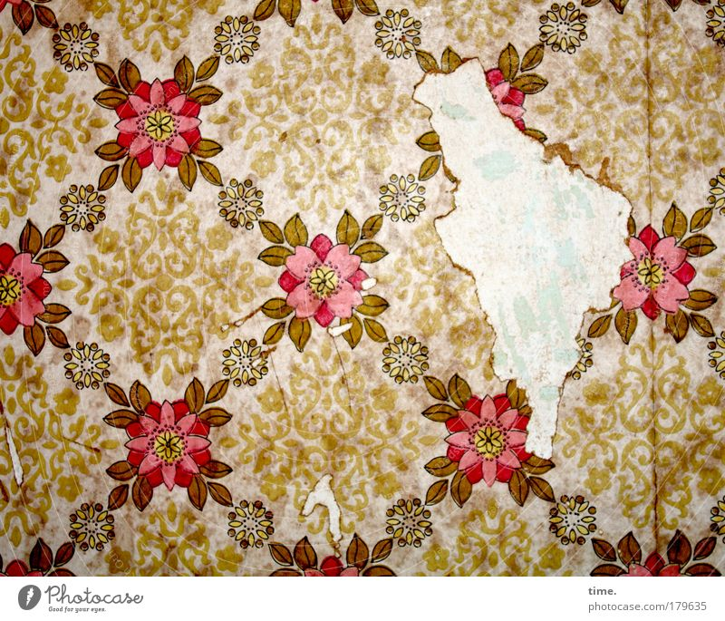 Flower Wall (building) Room Flat (apartment) Paper Retro Broken Decoration Wallpaper Square Historic Living room Patch Nostalgia Art Crack & Rip & Tear