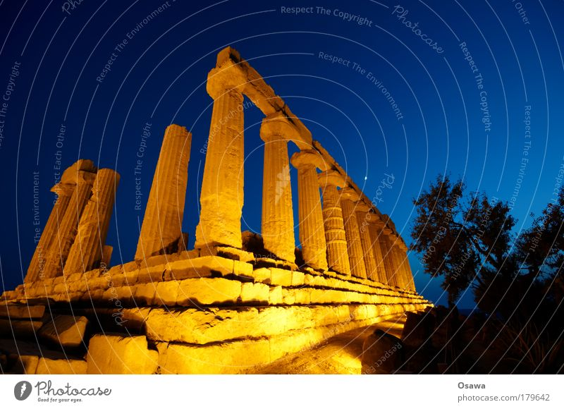 Sky Blue Tree Heaven Architecture Building Orange Manmade structures Italy Ruin Column Destruction Ancient Greece Temple