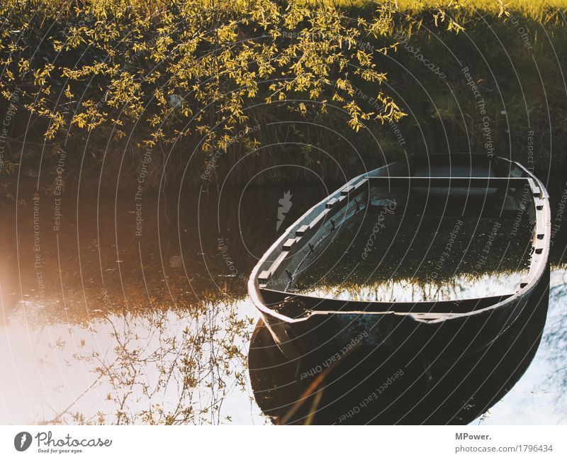 fishing boat Nature Autumn Plant Lakeside River bank Wet Watercraft Spree Spreewald Go under Surface of water Fishing boat Tree Old Broken Colour photo