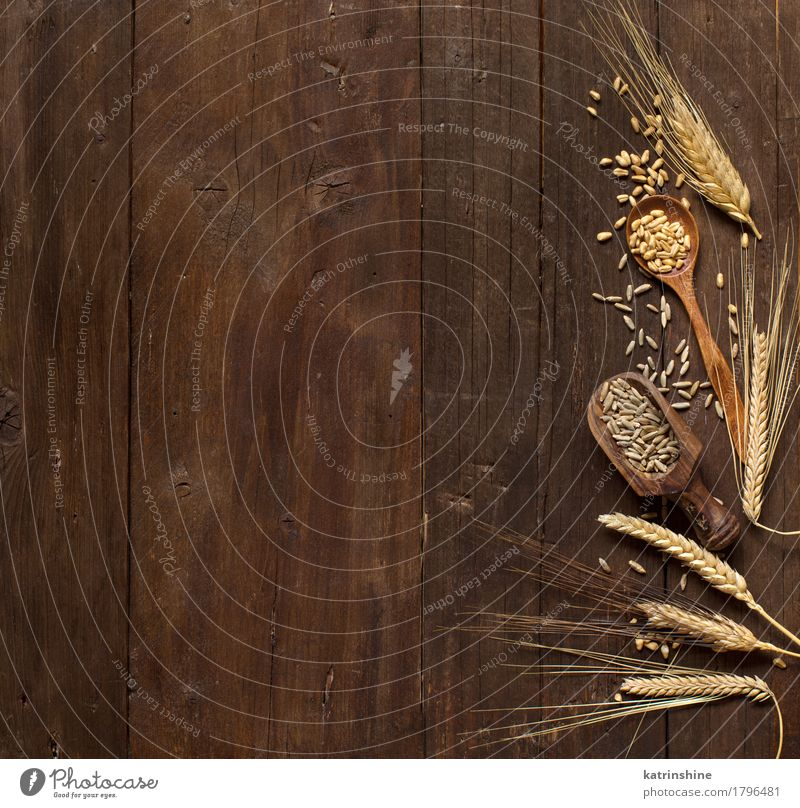 Wheat and spelt background Nature Plant Summer Beautiful Yellow Natural Wood Brown Growth Fresh Beauty Photography Farm Grain Harvest Agriculture Meal