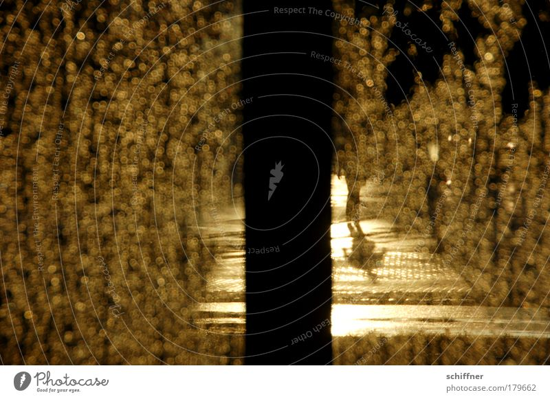 Street Rain Going Weather Drops of water Gold Surrealism Pedestrian Adhesive plaster