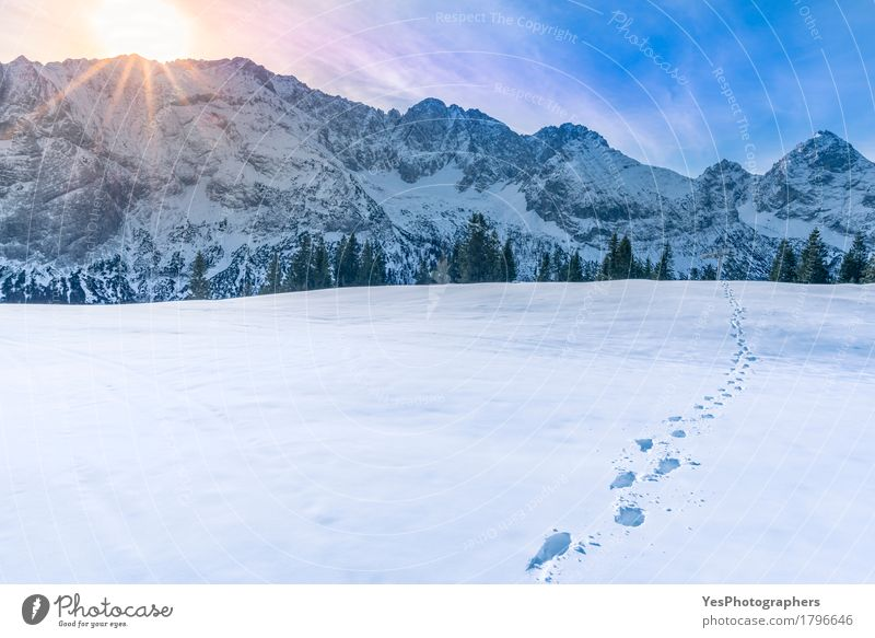 Mountain peaks in winter Sky Blue White Sun Landscape Calm Joy Winter Cold Snow Freedom Weather Fresh Europe Footpath