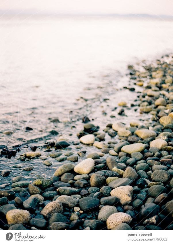 Rocky Beach at Dusk Nature Vacation & Travel Summer Beautiful Landscape Ocean Relaxation Calm Lifestyle Environment Coast Tourism Freedom Gray Brown