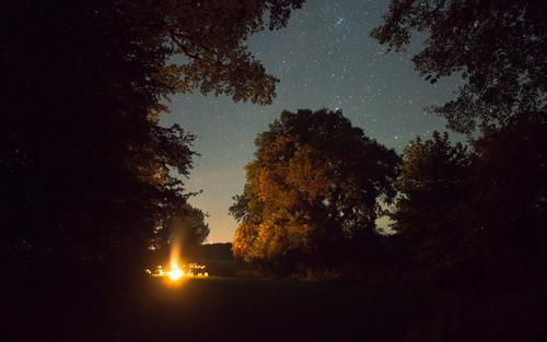 Campfire under the stars Trip Adventure Freedom Landscape Cloudless sky Night sky Stars Summer Tree Forest Dark Warmth Orange Together Camp fire atmosphere