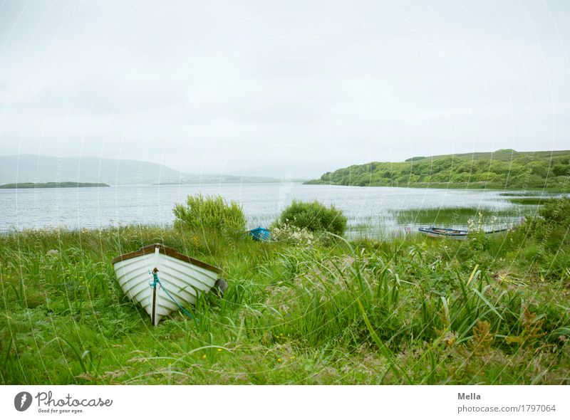waiting Leisure and hobbies Fishing (Angle) Trip Environment Nature Landscape Grass Lakeside Boating trip Fishing boat Rowboat Lie Loneliness Relaxation Idyll