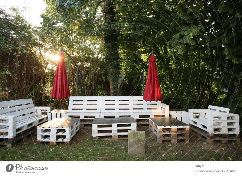 Pallet group in backlighting Lifestyle Furniture Summer Autumn Beautiful weather Tree Bushes Garden Park Forest Deserted Terrace Sunshade seating group