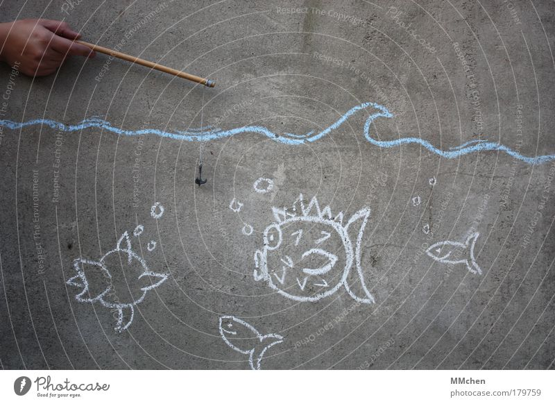 Water Ocean Cold Wall (building) Lake Concrete Fresh Fish Dive Draw Human being Painting (action, artwork) Aquarium Fishing (Angle) Refreshment