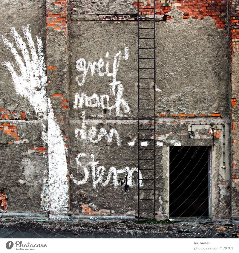 reach for the star(s) Colour photo Subdued colour Exterior shot Deserted Day Art Youth culture Subculture Leipzig Saxony Industrial plant Factory Wall (barrier)