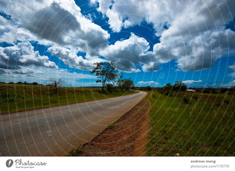 way home Colour photo Exterior shot Day Contrast Deep depth of field Wide angle Vacation & Travel Event Nature Landscape Sky Clouds Beautiful weather Wind Tree
