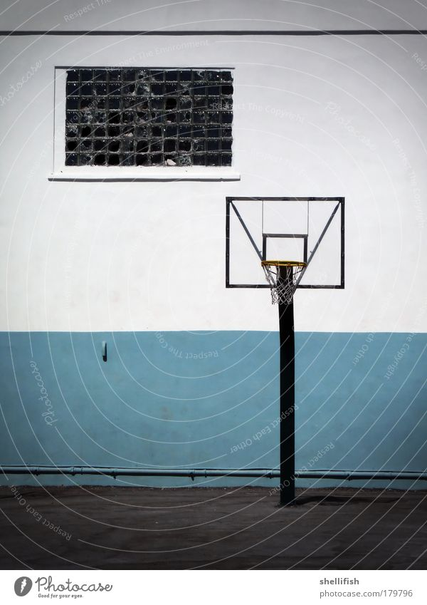 Basketball monotony in blue white Colour photo Exterior shot Polaroid Deserted Copy Space left Day Contrast Central perspective Leisure and hobbies Playing