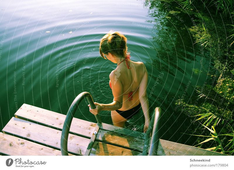 Woman Human being Nature Youth (Young adults) Water Beautiful Sun Summer Calm Relaxation Feminine Grass Happy Lake Landscape