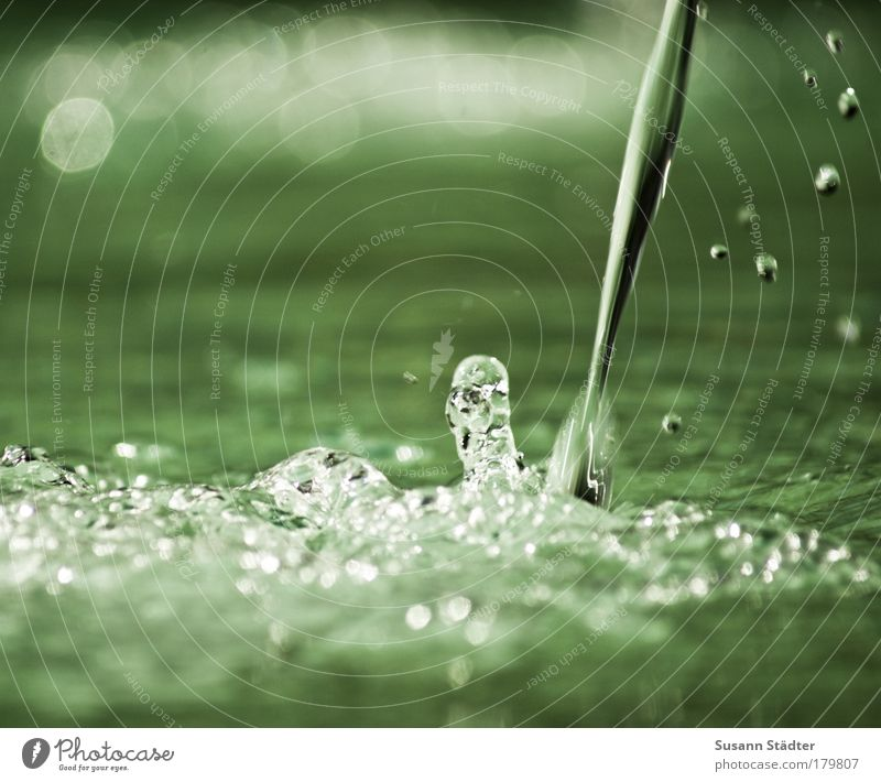 Nature Water Green Lake Dream Park Glittering Drops of water Elements Well Near Fluid Damp Pond Effervescent