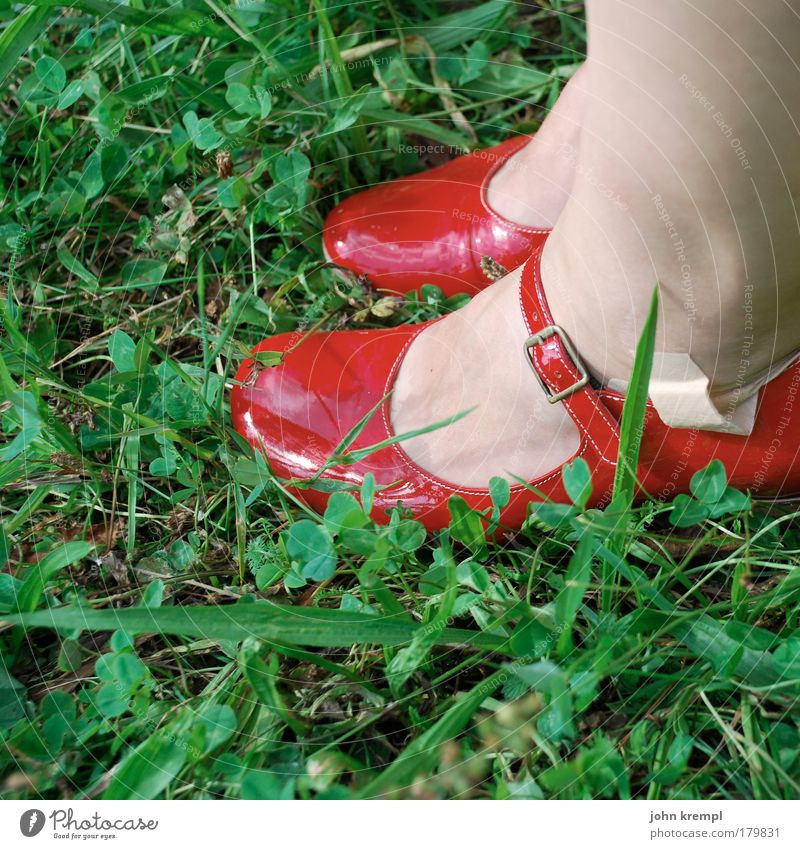 Human being Green Beautiful Red Summer Meadow Feminine Grass Garden Style Feet Park Footwear Glittering Sit Elegant