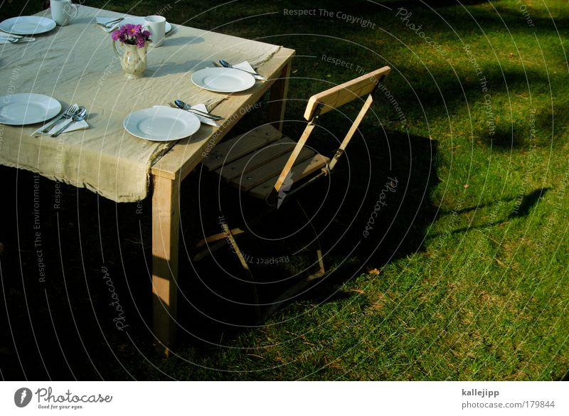 garden concert Colour photo Multicoloured Exterior shot Copy Space right Day Light Shadow Contrast Bird's-eye view Nutrition To have a coffee Coffee Crockery