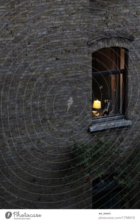 Window to the courtyard Living or residing Flat (apartment) House (Residential Structure) Moving (to change residence) Arrange Lamp Town Wall (barrier)